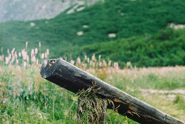 mountain bench by zojj