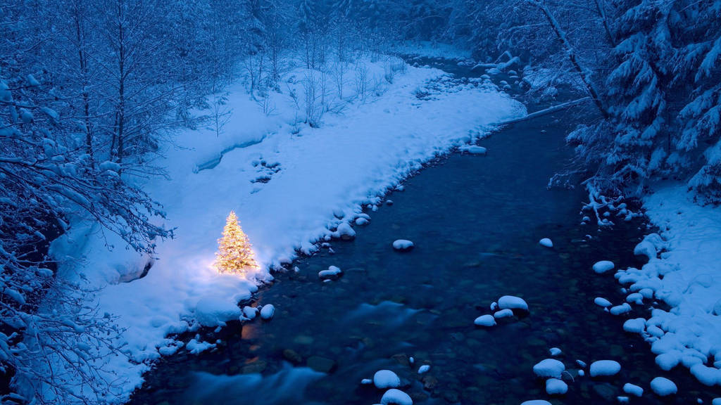 winter-season-snow-trees-christmas-trees-rivers-HD by DarkEagle2011