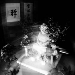 Zen by lwc71