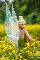 Tinker Bell and Wings by NicaCosplay