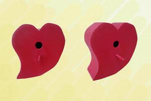 Birdbox Heart by Raxfox