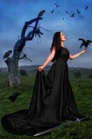 Warrior Goddess by BrankaArts