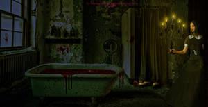 The Haunted Bathroom by BrankaArts