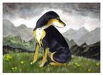 Little Mountain Dog by Bewildermunster