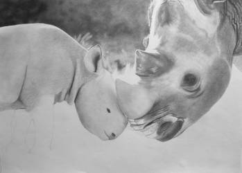 Rhinos WIP by HannaKarlsson