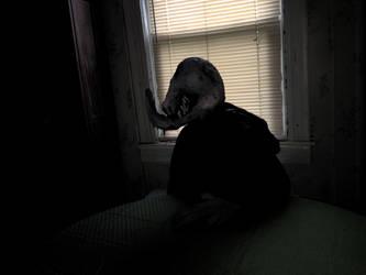 Maclaurin Horror III by TheScreechingPumpkin