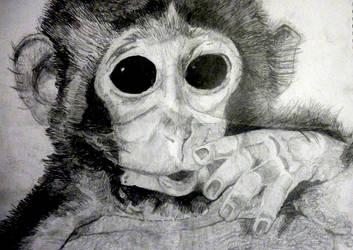 Teeny Weeny Monkey by Mellybean91