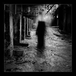 phantom by li-bra