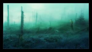 dreamland by li-bra