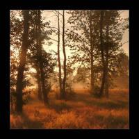 Morningtree by li-bra