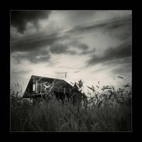 little house in the corn by li-bra