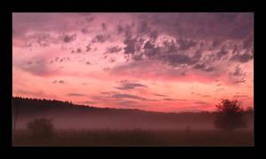 foglight by li-bra