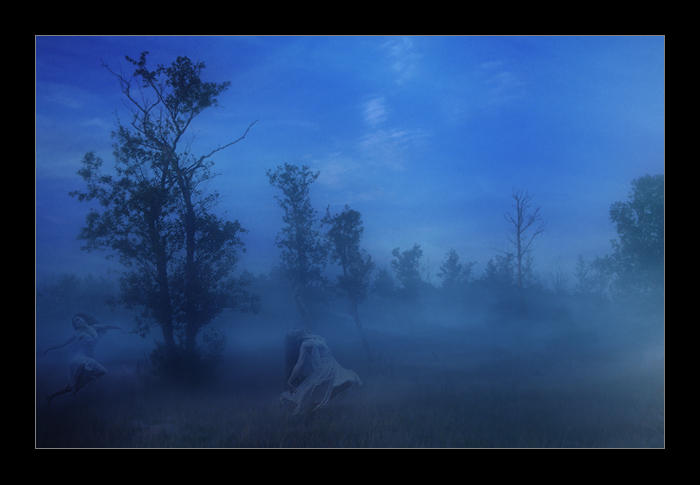 enchant forest by li-bra