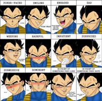 Expressions Meme by NekosVeggies