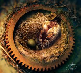 Mother bird #2 by PriscillaSantanaArts
