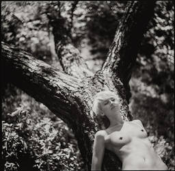 film0020 by andreydubinin