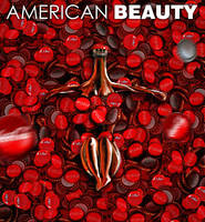 American Beauty by canerator
