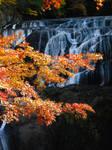Fukuroda falls 4303 by FubukiNoKo