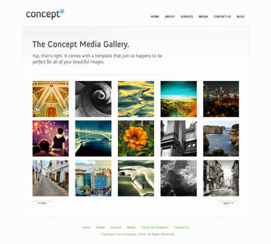 Concept - Wordpress - Gallery by escapepodone