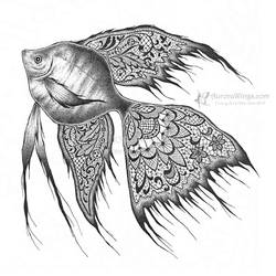 Black Lace Angelfish by aruarian-dancer