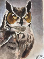 Owl Study in Acrylic paints by LusciousLavender