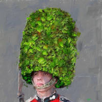 The 'green' guardsman by Les-Allsopp