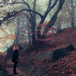 automne tardif by l0ndon-boulevard