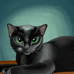 Black Cat by selftaughtartist1