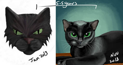 Black Cat: Draw This Again by selftaughtartist1