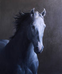Painting Traditional - Horse by MeWannaLearn