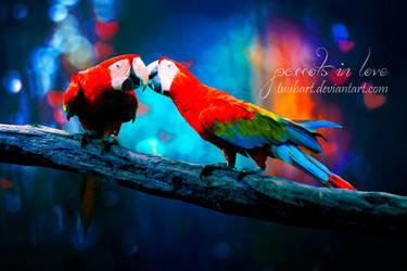 -parrots in love II- by TuubArt