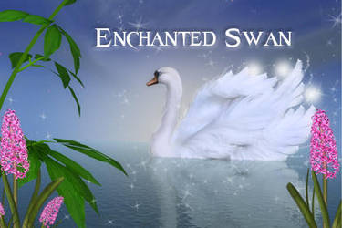 Enchanted Swan psd files by mmebuterfly