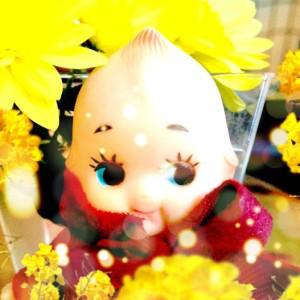 Shinkaigyo's Profile Picture