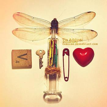 curious entomology. by Camiloo