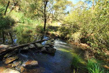Creek Crossing Stock by blaisedrew62