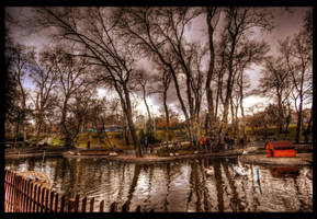 Winter or Autumn HDR by ISIK5
