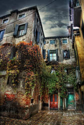 Ivy and Gold HDR by ISIK5