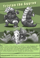 Tristan the aggron ref page by Risenpaw