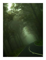 Foggy road by Ouylle