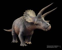 Triceratops horridus by Swordlord3d