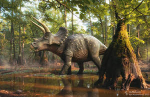Triceratops in the forest by Swordlord3d