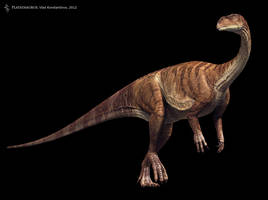 Plateosaurus by Swordlord3d
