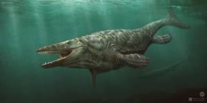 Tylosaurus pembinensis by Swordlord3d