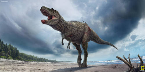 Gorgosaurus. by Swordlord3d