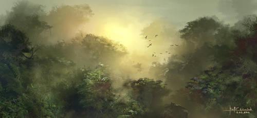 rainforest by RaV89