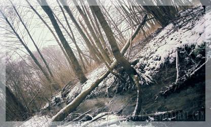 Snowy Brook by D-Dyee