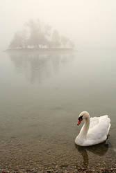 -swan2- by tynaS