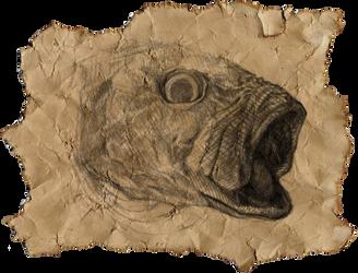 Fish Head by Lameniet