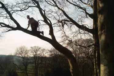 seeking a better view by benjwalker