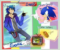ficha-Sonic- cartoon town by BleHc